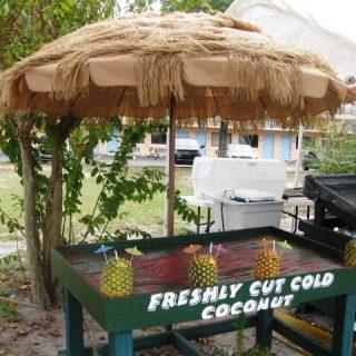 Wordless Wednesday: Fresh Cut….Coconut?