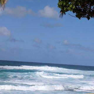 Hawaii Christmas Vacation Part 1