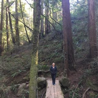 Wordless Wednesday: Muir Woods