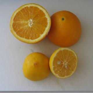 Meyer Lemon Sugar Cookies Recipe, 1 Points+